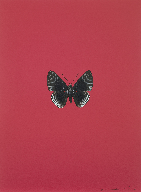 Damien Hirst    It's a Beautiful Day (vermelho) •2013 Gravura polimerizada Edição: 55 66.5 x 49 cm