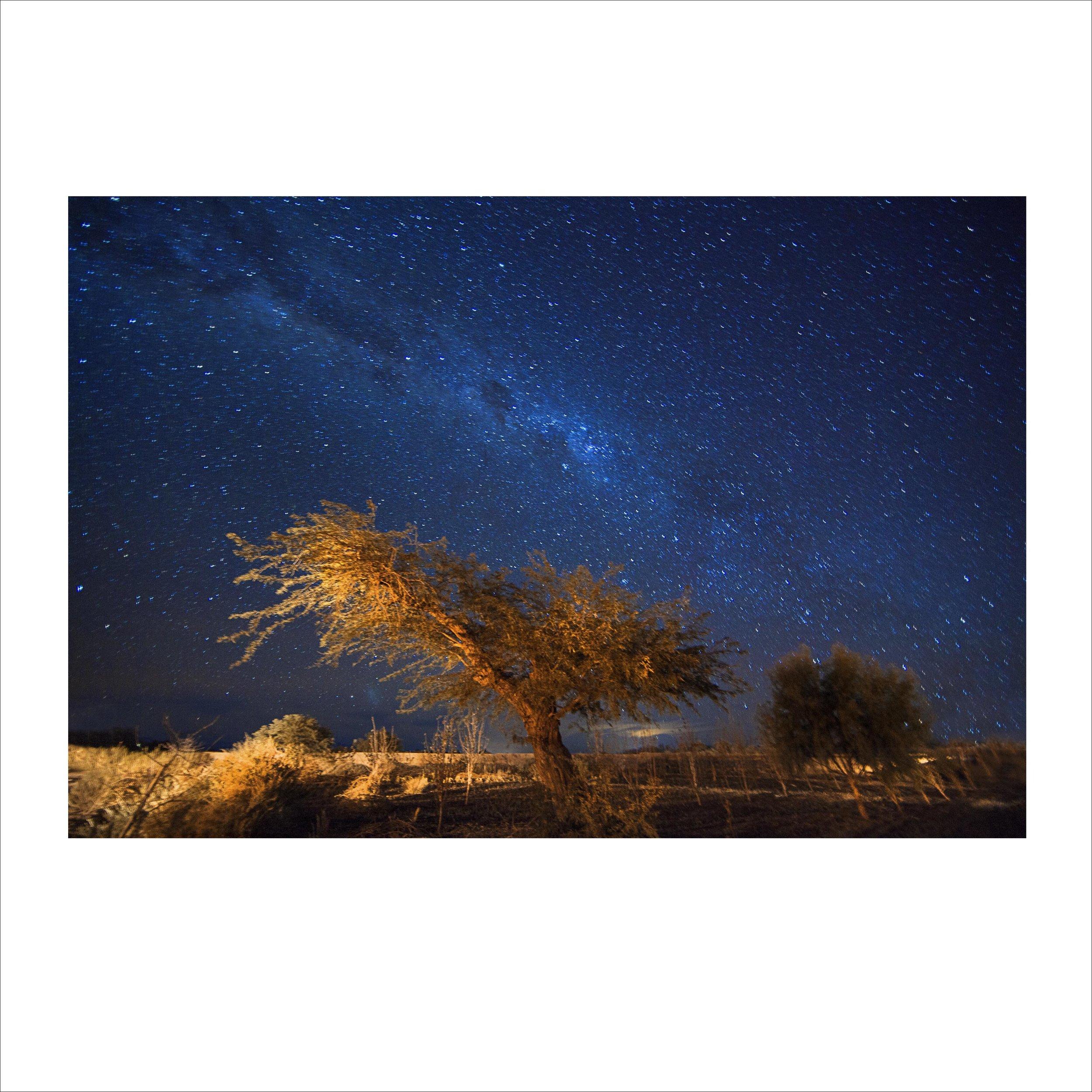 Atacama 09  2014  impressão sobre papel  67cm x 100cm