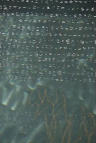 Mila Mayer Water Scriptures Two 5059 C-print em metacrilato Edição: 1/5 imagem: 60 x 90 cm