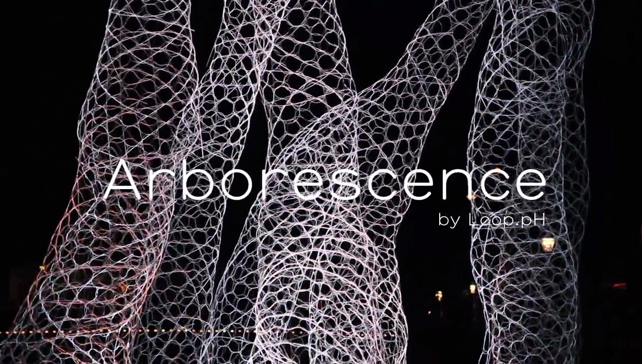 ArborescenceVideo.jpg