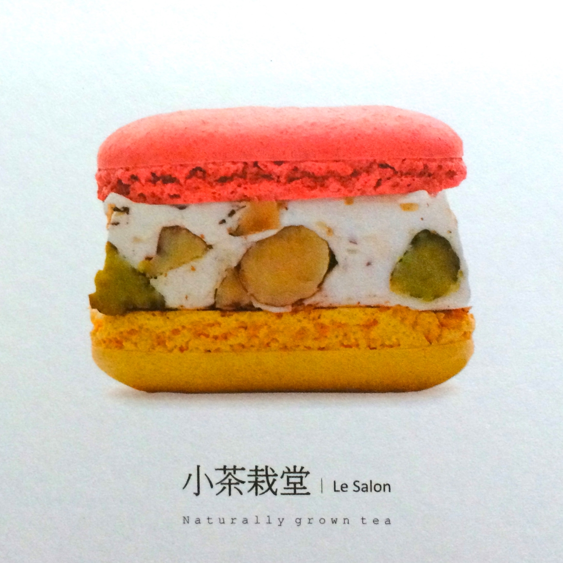 nougat-macarons , from  le salon  in taiwan. who ever heard of such a thing? hhh ate the ones claire brought before i could take a photo.