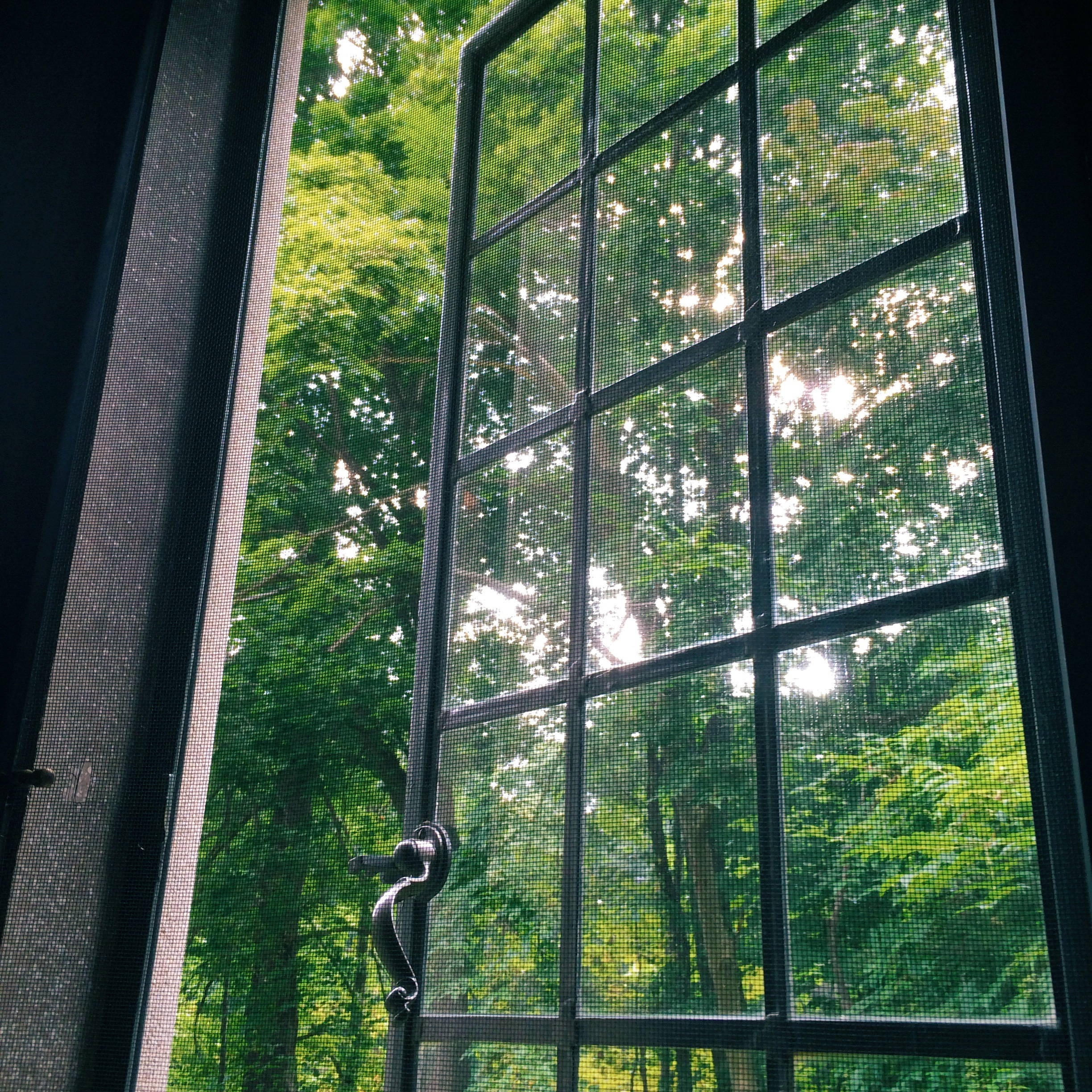 these cast iron windows are beautiful but don't really keep out the bugs. it's still a lovely view of trees and the lake.