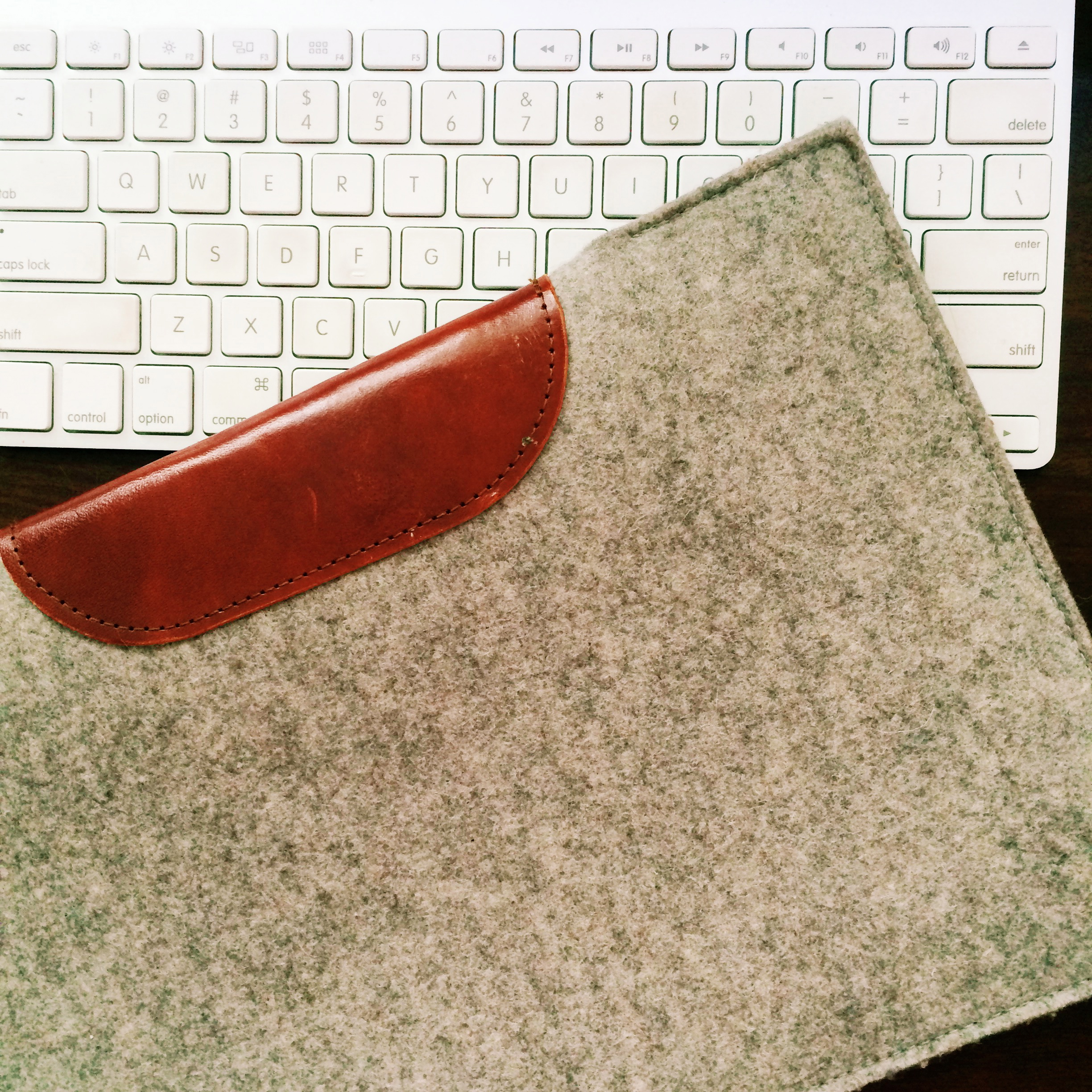 this  wool felt and leather laptop sleeve , which saw me through all my China travels.