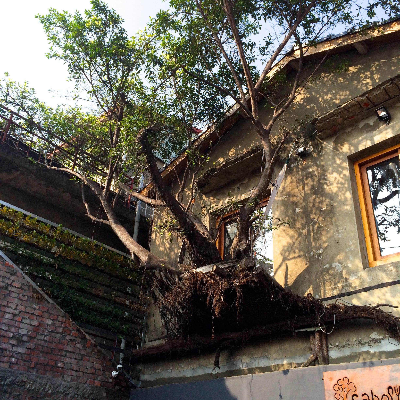 fantasystory-treehouse