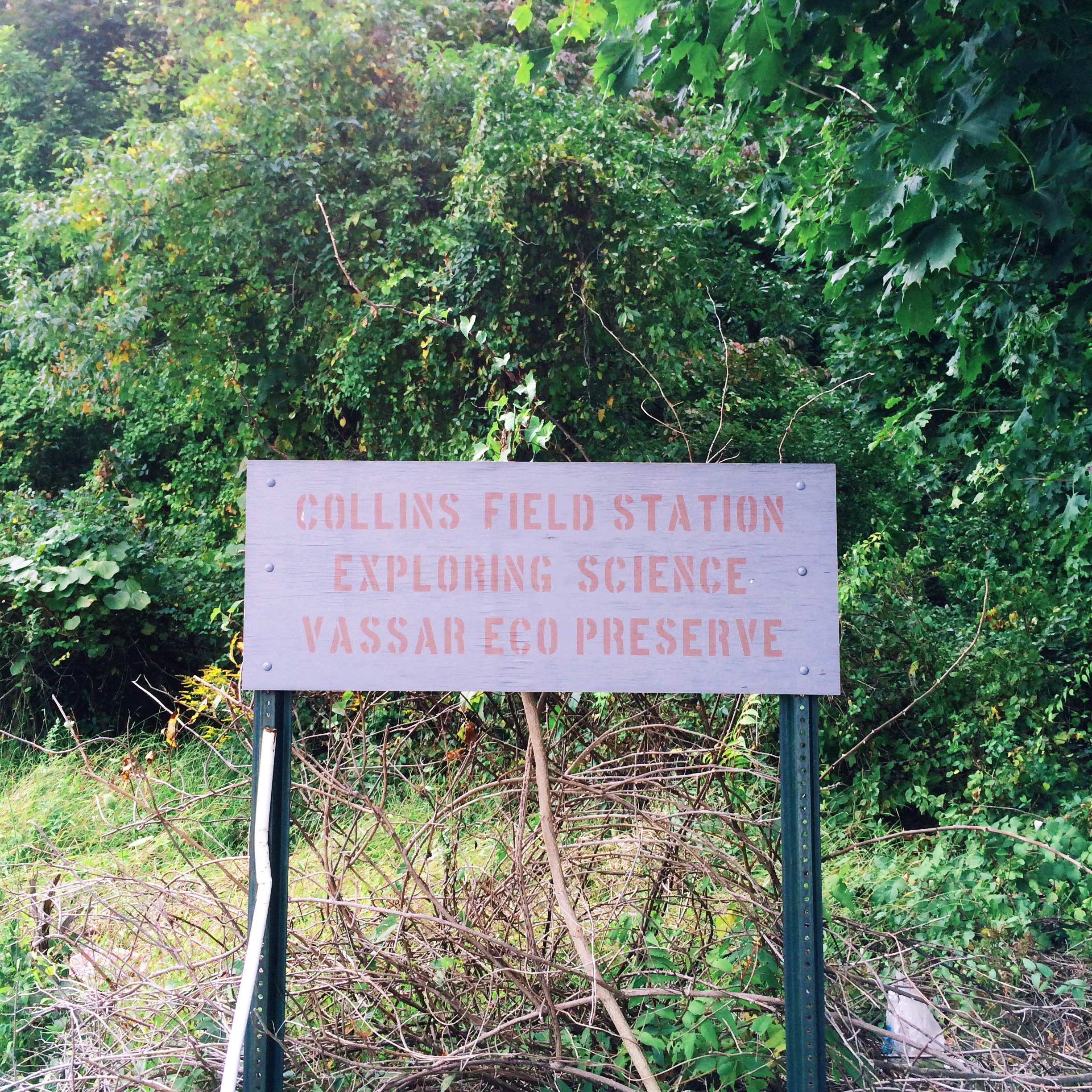 collins-field-station