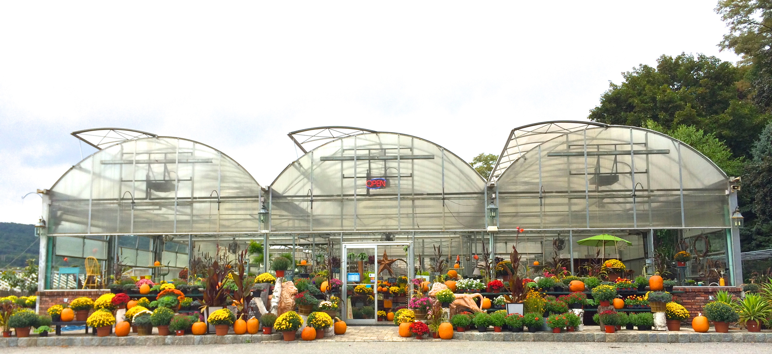 perrinos-greenhouse