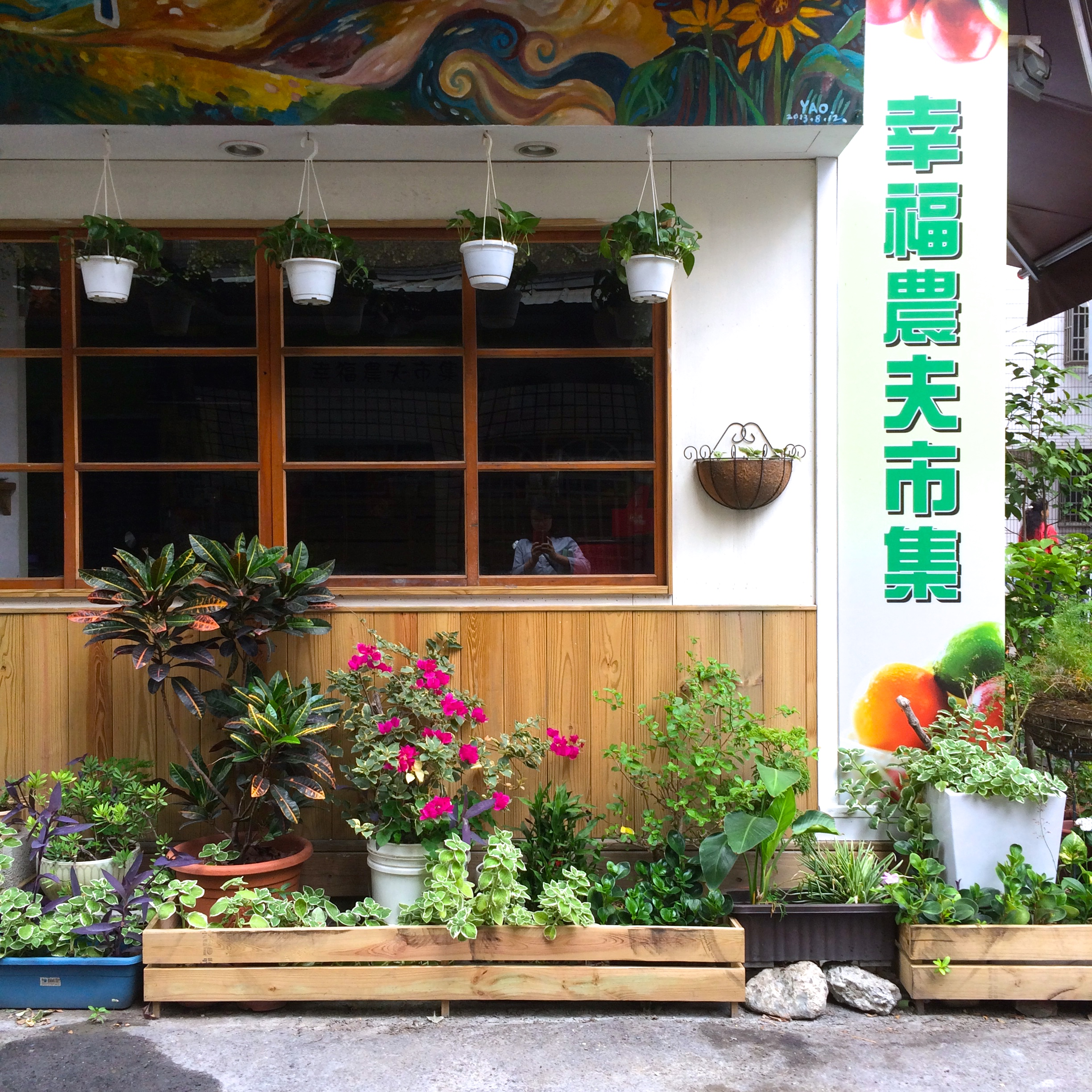 alleyplants5
