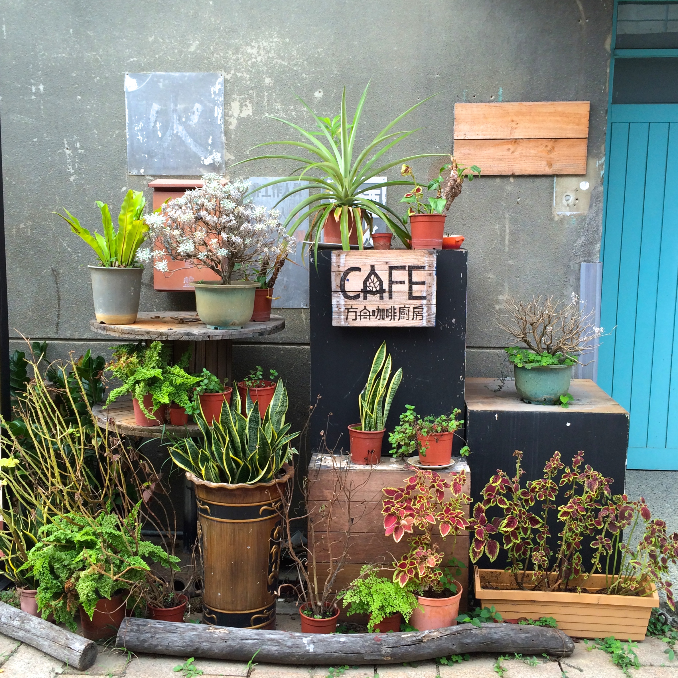 cafe-taichung-cultural-park