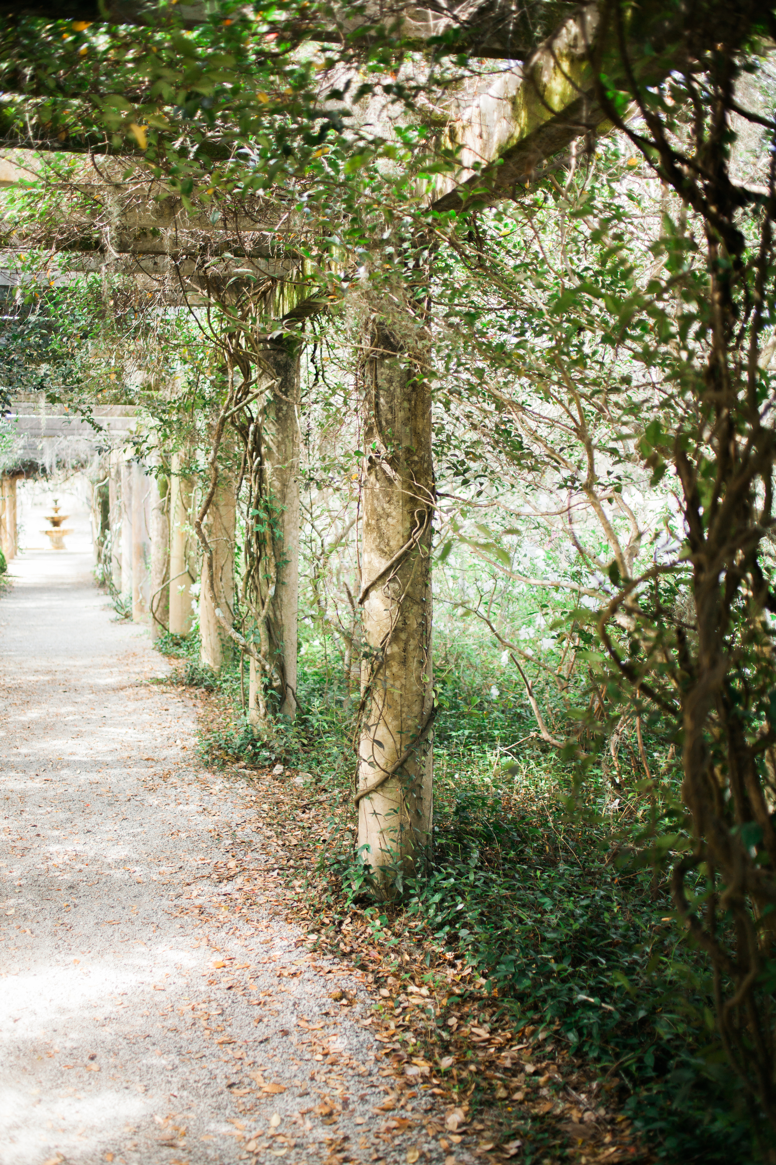 Wedding Venues in Wilmington NC | Wynona Benson Photography