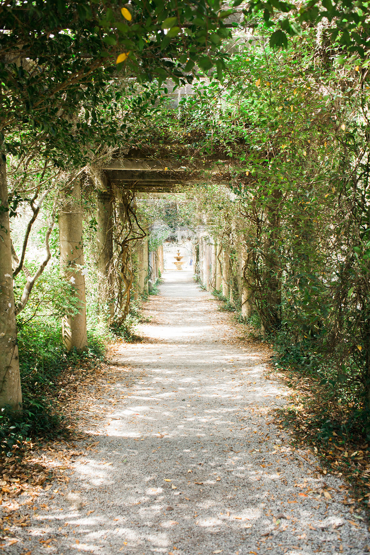 Airlie Gardens in Wilmington NC