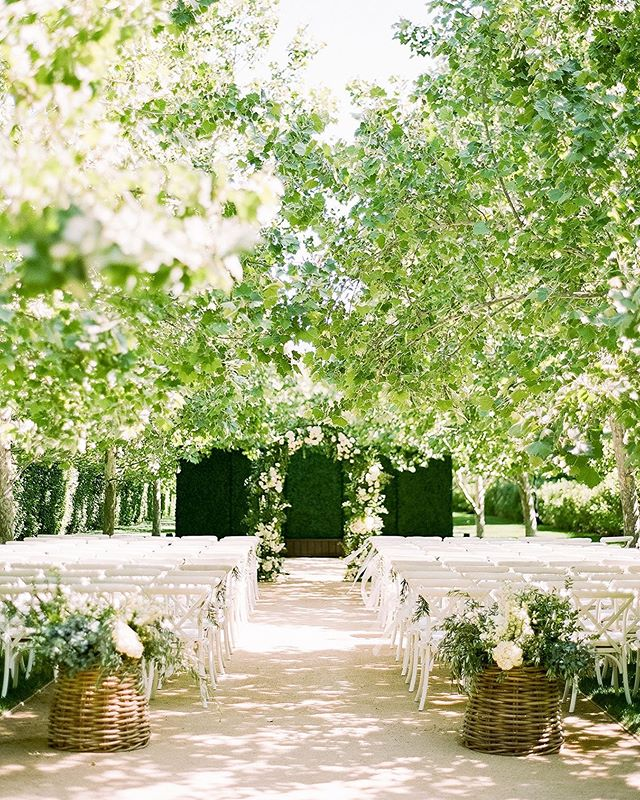 The natural setting of the @kestrelpark allée gets us every time! The sycamores couldn't have been any lusher for Ellie & Brett's June wedding. ⠀⠀⠀⠀⠀⠀⠀⠀⠀ Photography: @mikelarson. Floral Design: @cocorosedesign. Rentals: @brighteventrentals.