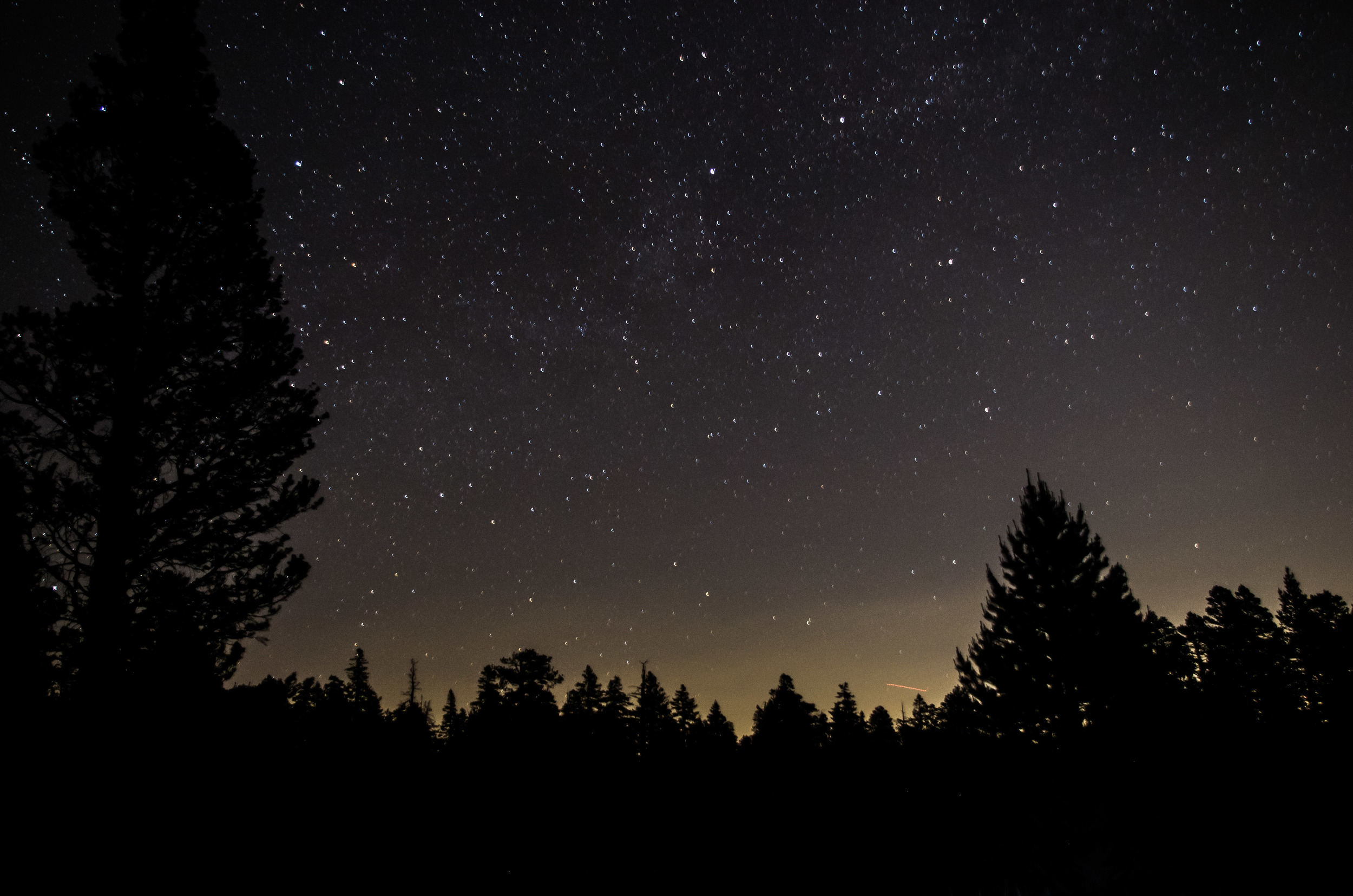 The night sky above the trees, above the mountain, above the desert below. Mount San Jacinto Peak State Park, California