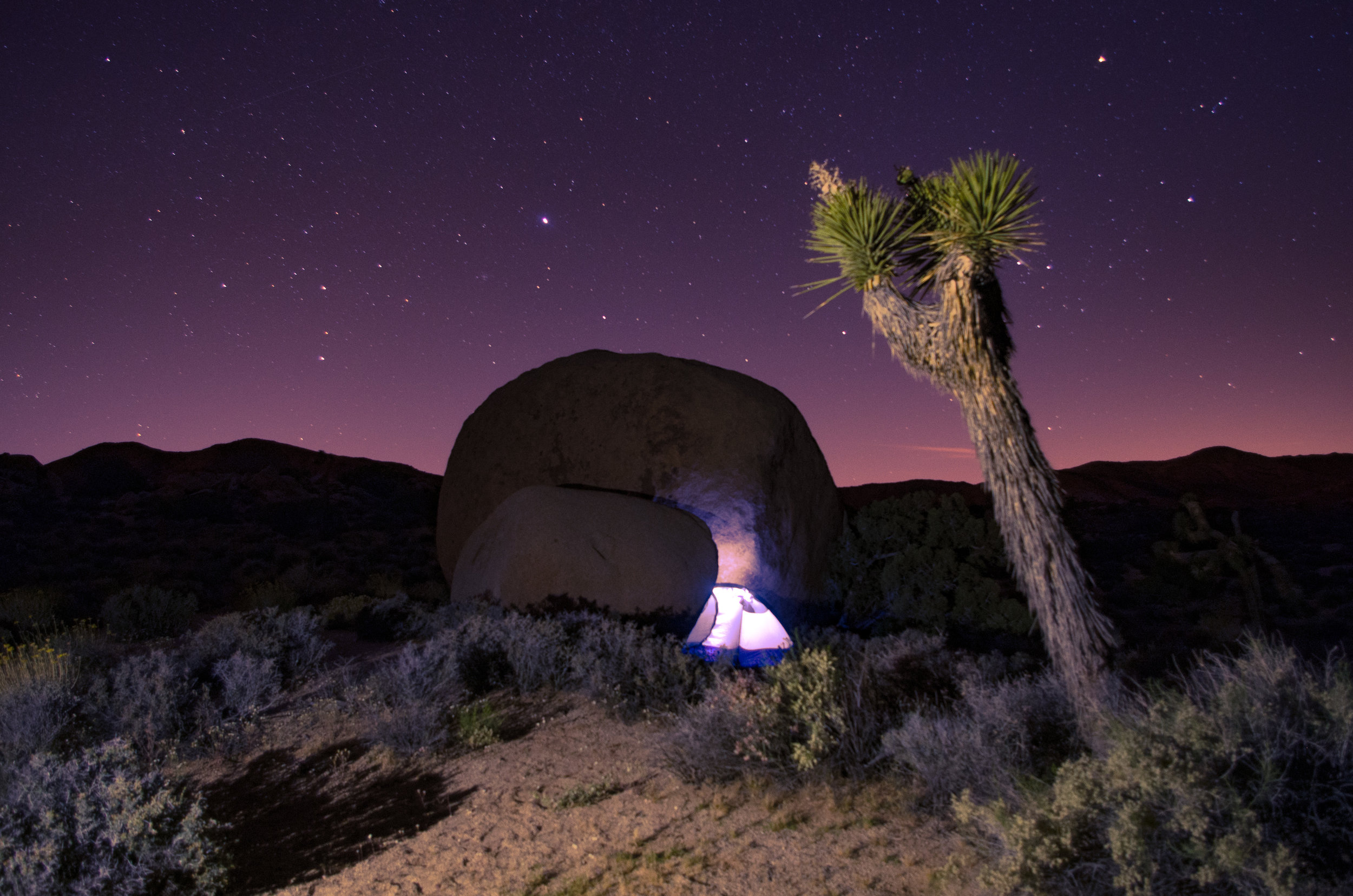 My first tent under the stars. Joshua Tree National Park, California.