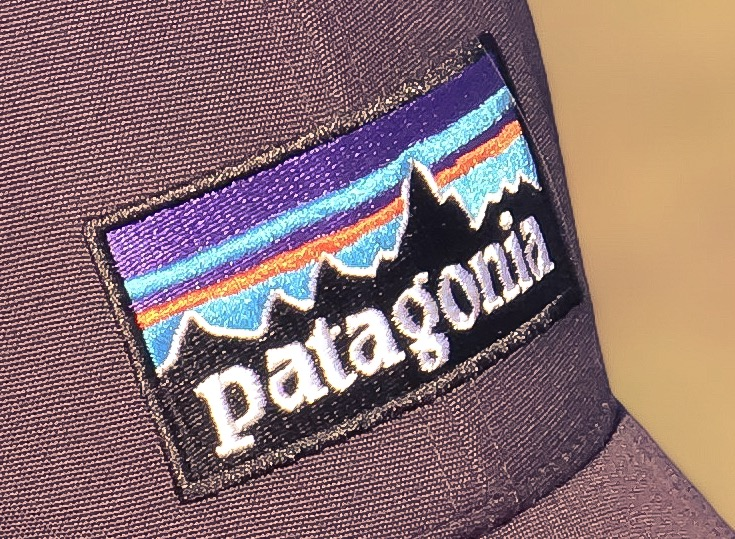 Patagonia is a leading advocate for capitalism's capacity for good.