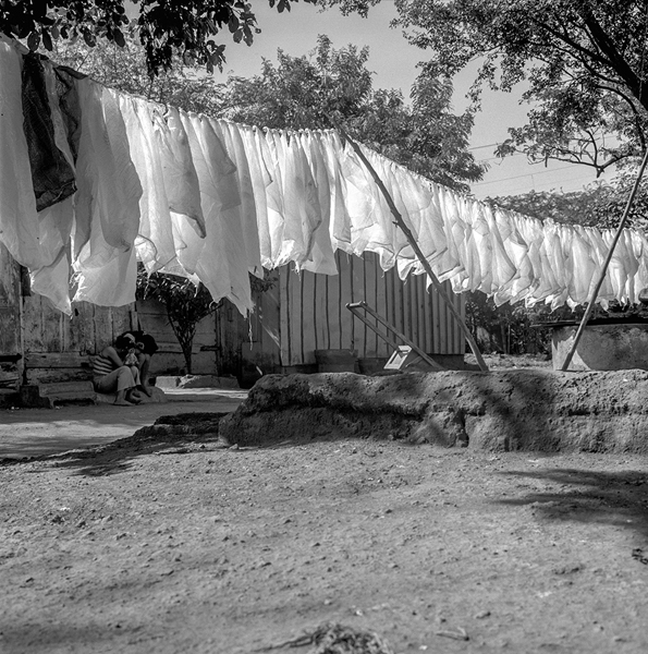 Plastic Bags Hanging on a Clothesline