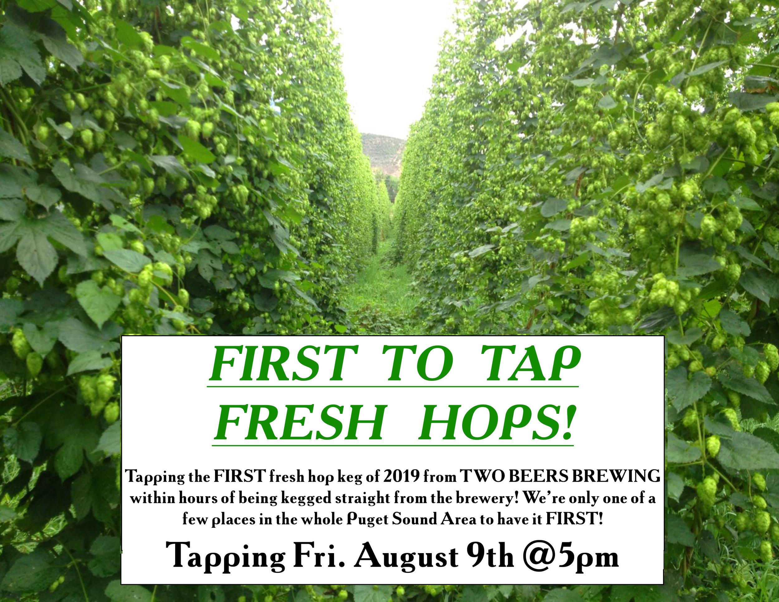 2019 Two Beers Fresh Hop Flyer.jpg