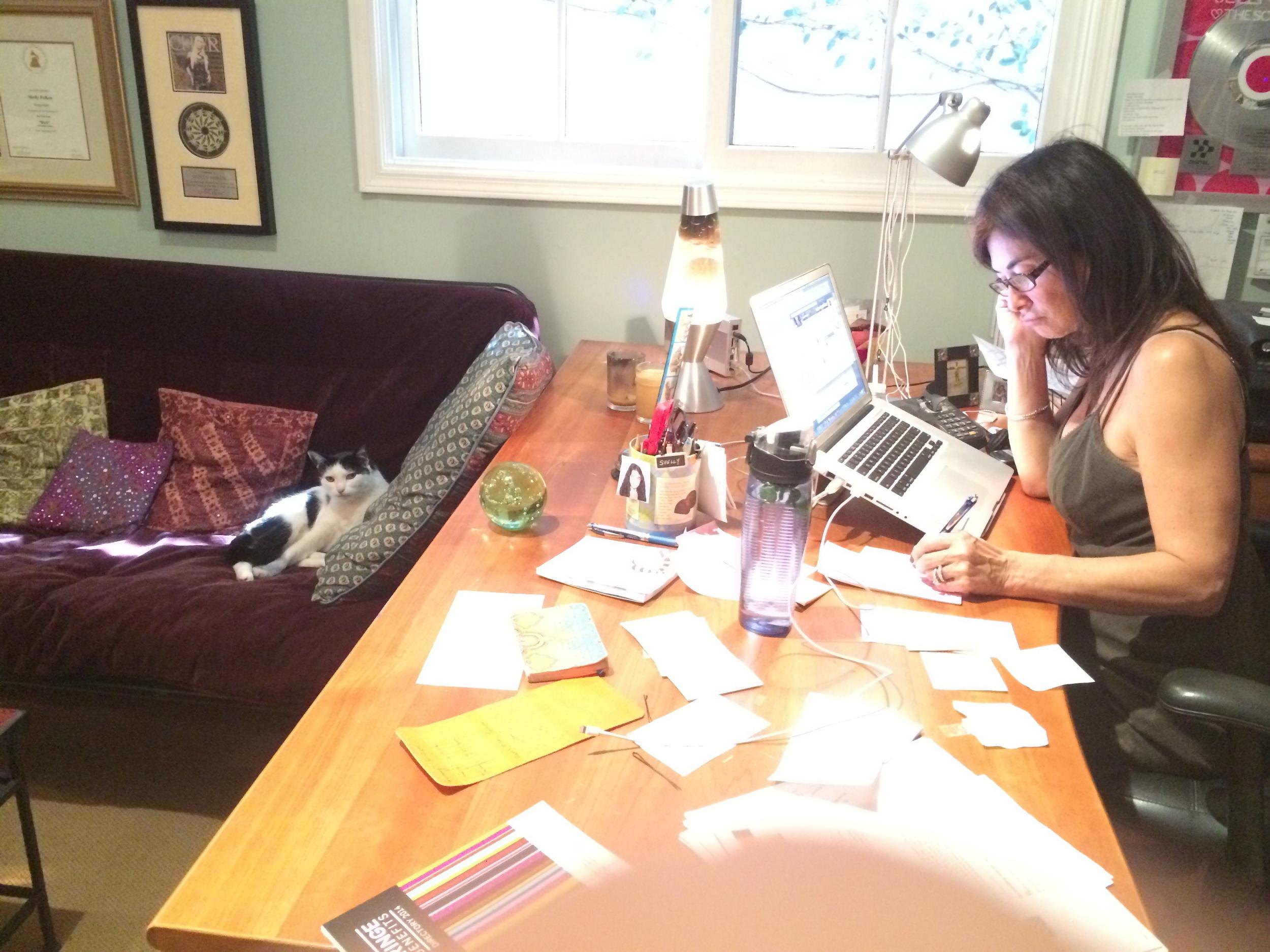 Shelly Peiken writing