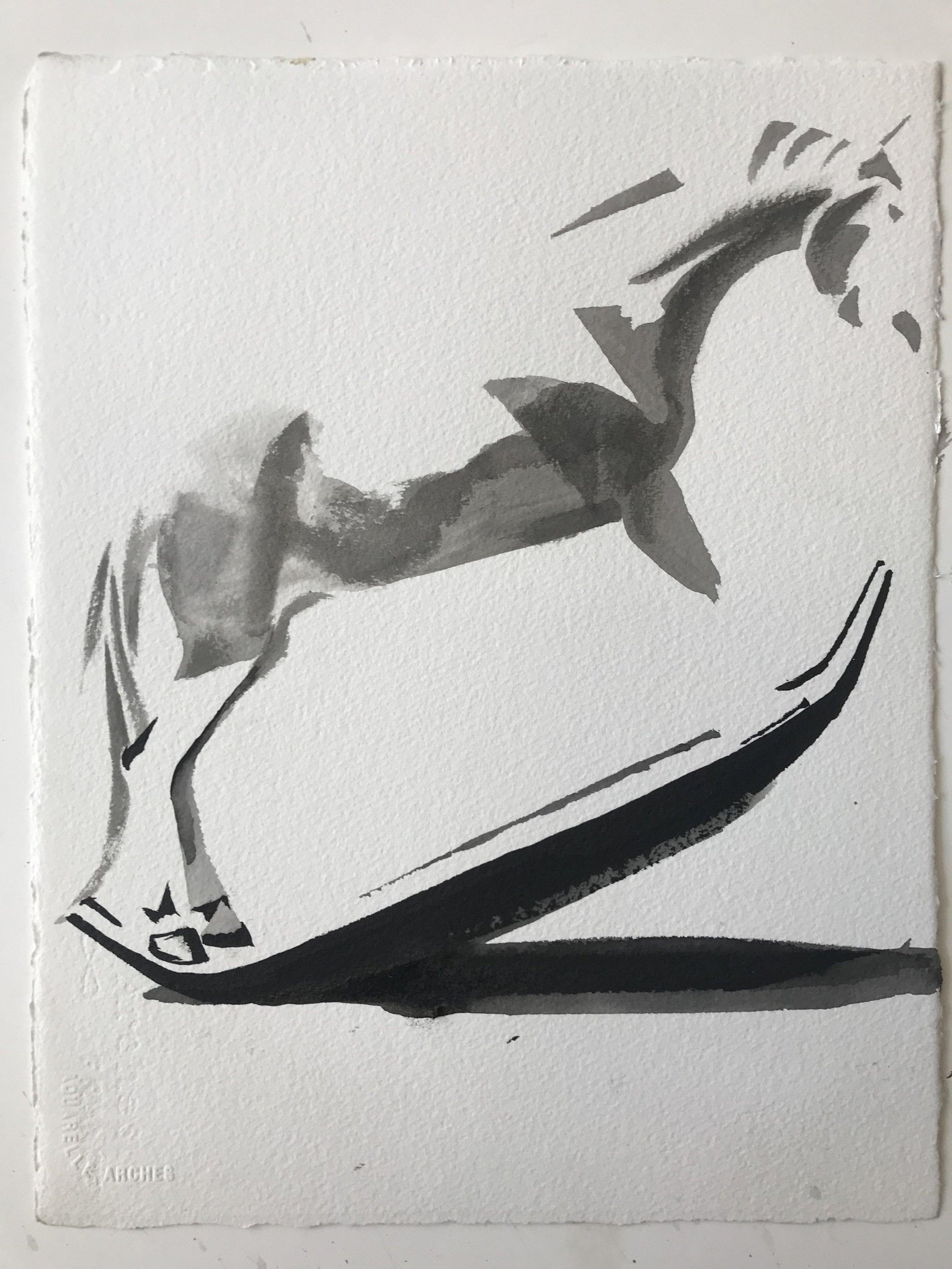 Horse, study