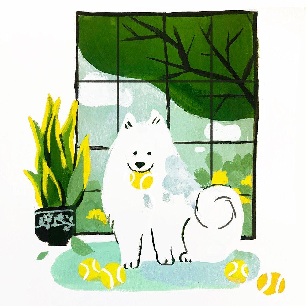Samoyed - Olivia Huynh