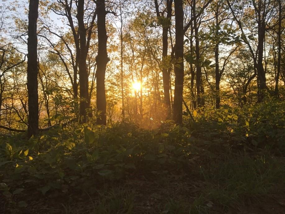 Embracing the Adventure of a Lifetim