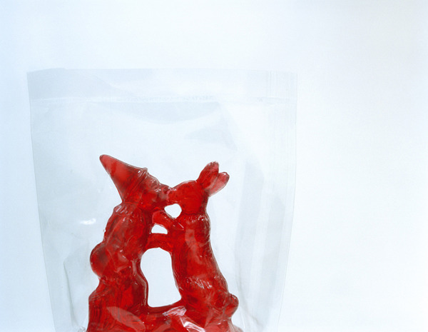 Sugar Rabbit,  2003 Pigment print on heavy rag paper 26 1/2 x 34 1/8 inches, edition of 5