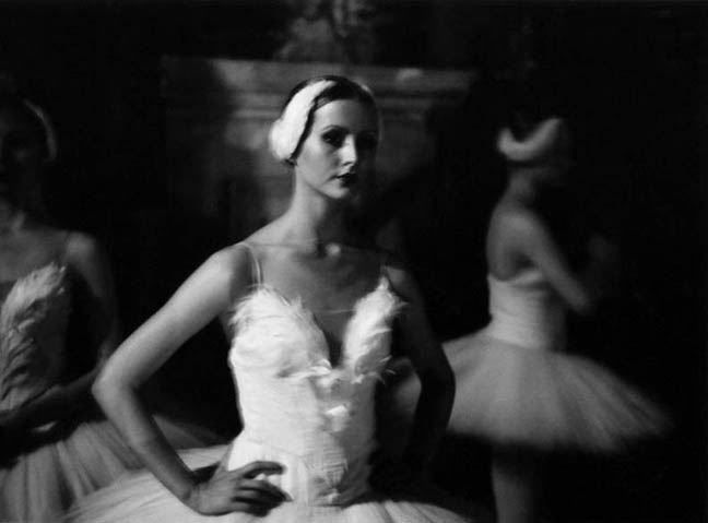 Elysia Fridkin / Swan Lake,  2004 Selenium toned gelatin silver print 20 x 24 inches,  edition of 10