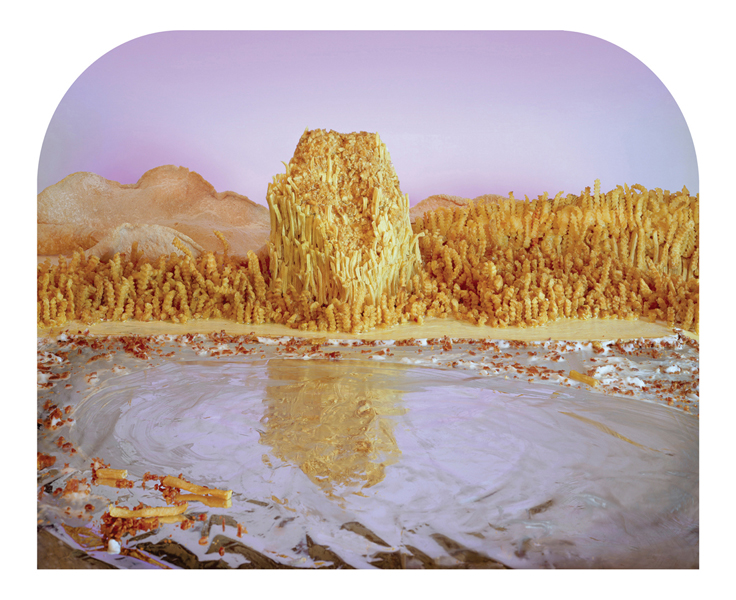 Ciurej & Lochman Collaborative Projects  Deep Fried Bluffs , 2013 Archival pigment print on Hahnemuhle bright white rag paper 18 x 22 inches  Edition of 8, 2AP