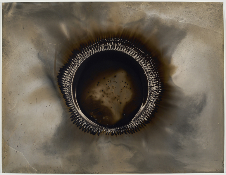 Christopher Colville  Ouroboros 3 , 2016 Unique gunpowder generated gelatin silver print 24 1/2 x 32 inches