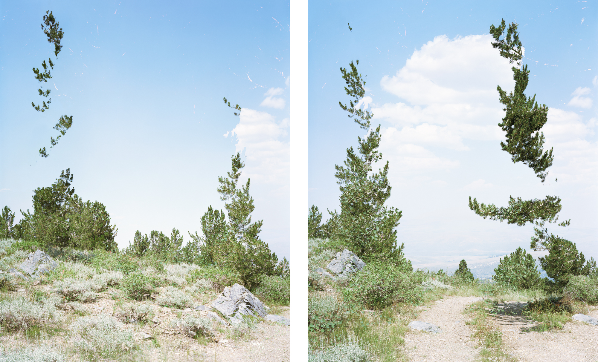 Lightness (VL), 2018 - a diptych of vertical long views of a desert landscape  showing a path through two Photoshopped trees that seem to float in space invisibly.