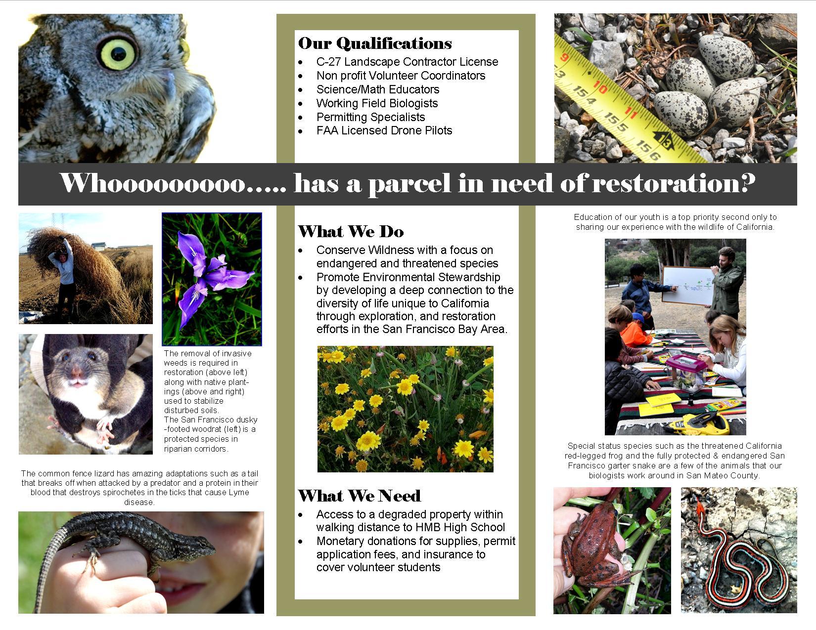 CNI 2018 brochure page 2.jpg