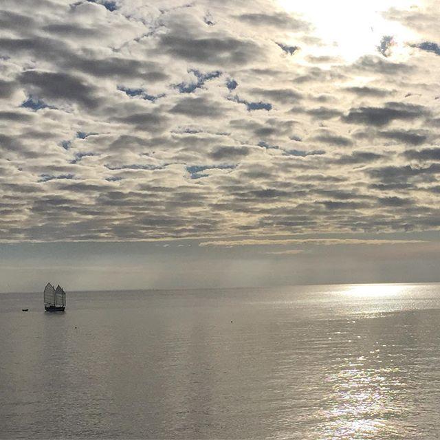 Lazy winter Sunday's #nowweareinthepineappleexpress #westvancouver #lighthousepark #myfavourite #canada #sailing