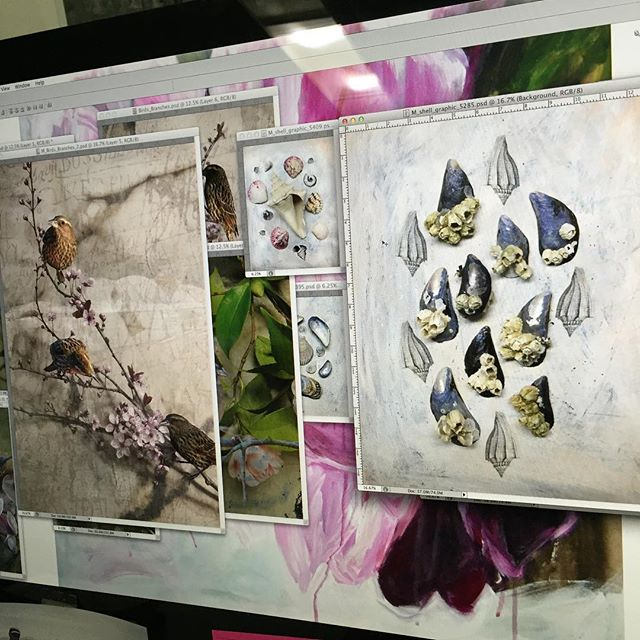 On the screen - Tis the season to create #january #canadianartist #photographer #licensing #prints #cards #whyismycomputersoslow #ohyeah #seashells #collage #birds