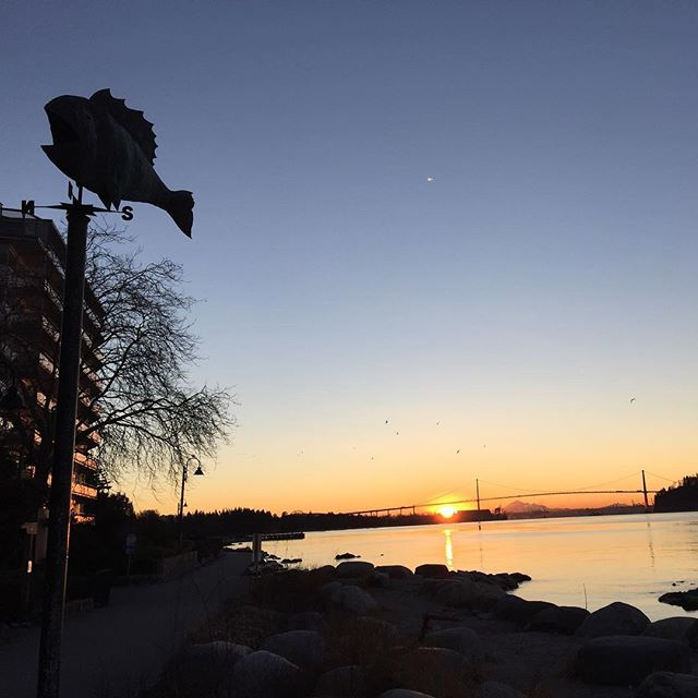 Yellow ocean to the east #sunrise #westvancouver #seawall #westcoast #februaryfirst