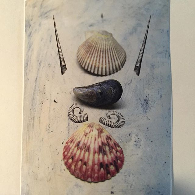 A little levity to end the week #surrealism #shells #yvr #collage #illustration #print