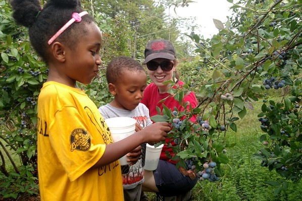 Making new friends while gleaning (and eating) blueberries at Singing Pines Farm