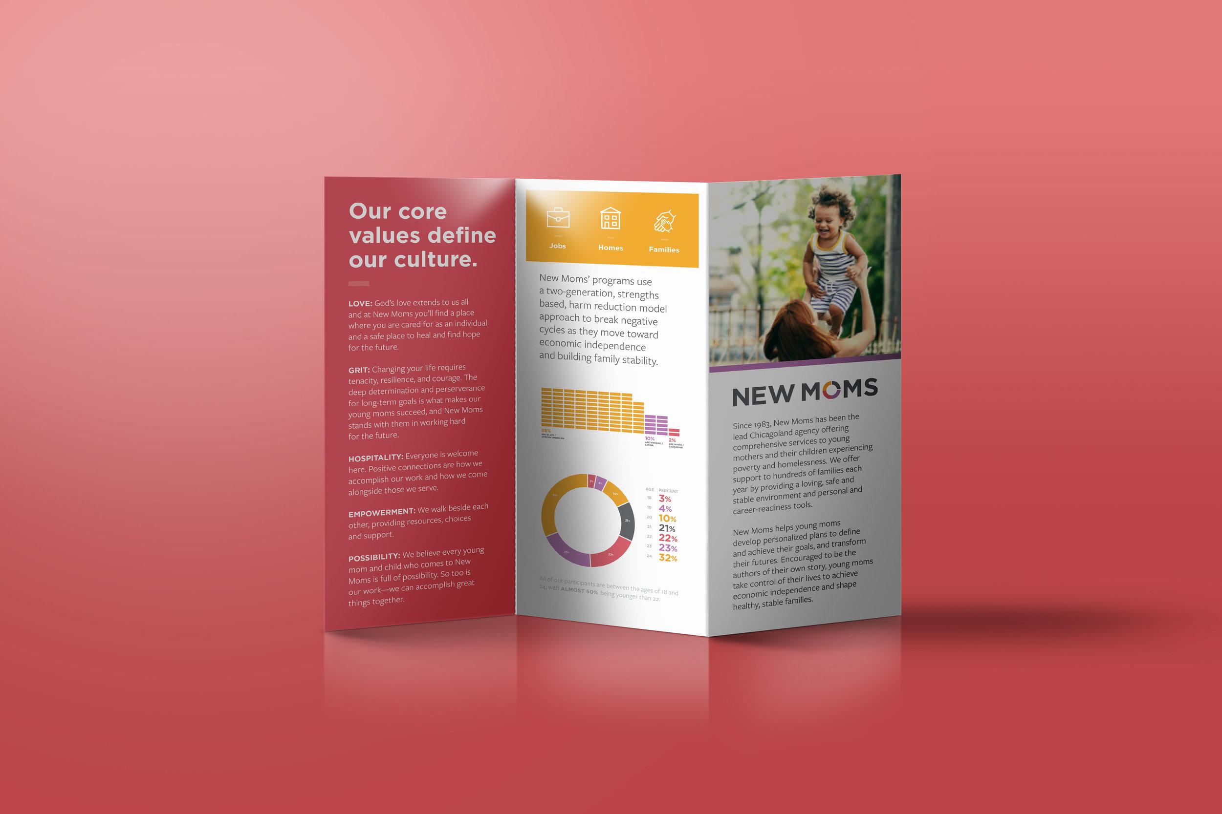 nonprofit-brochure-elenapotter.jpg