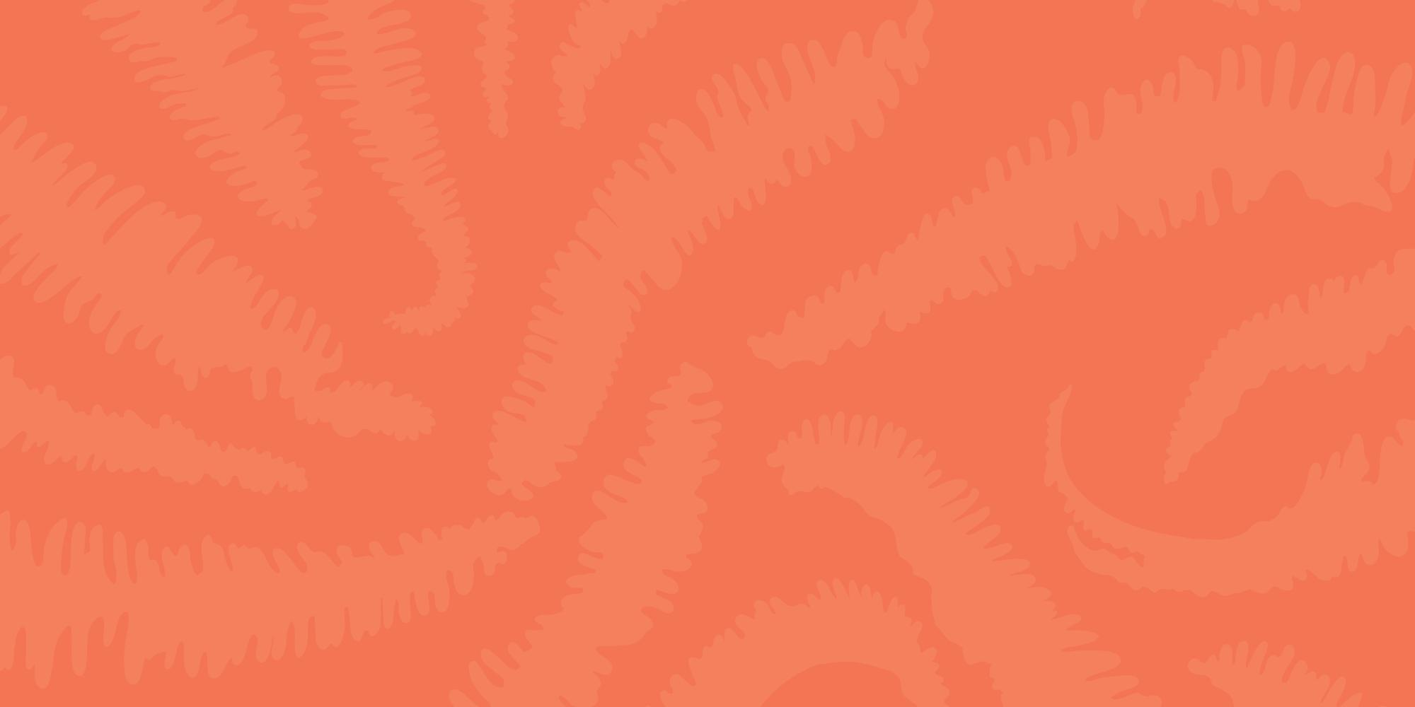 elenapotter-sundots-pattern.jpg