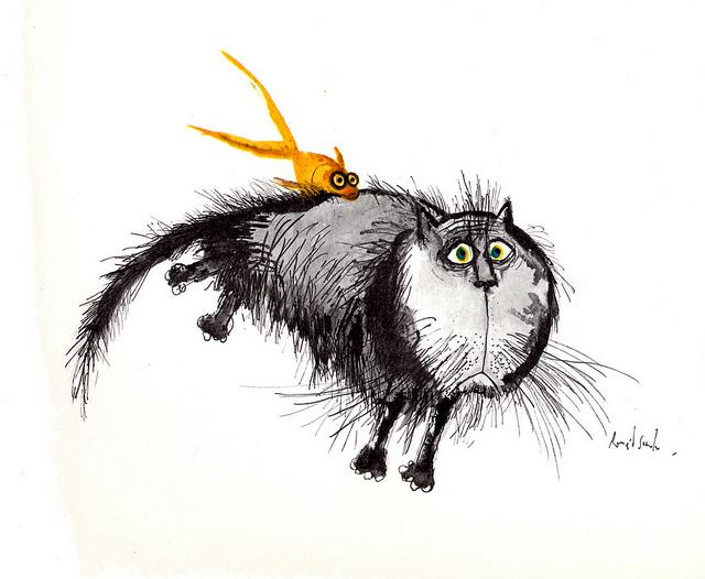 Edward Searle Cat