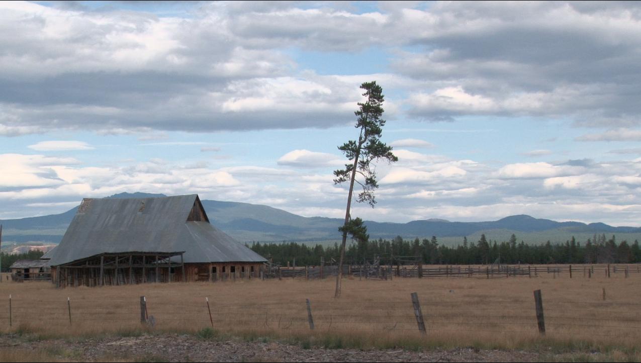 Lonely Barn.jpg