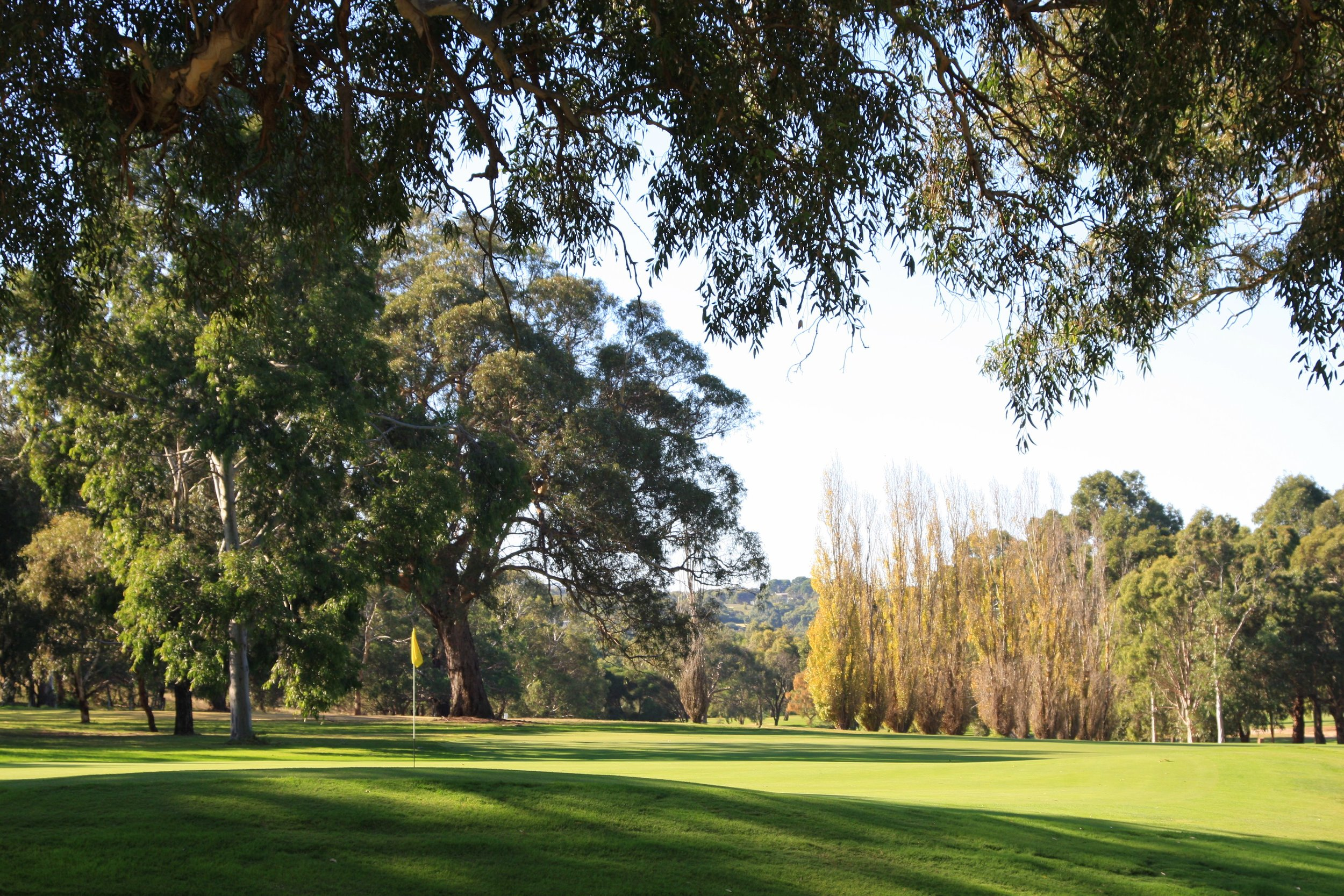 Victor Golf Course April 021.JPG