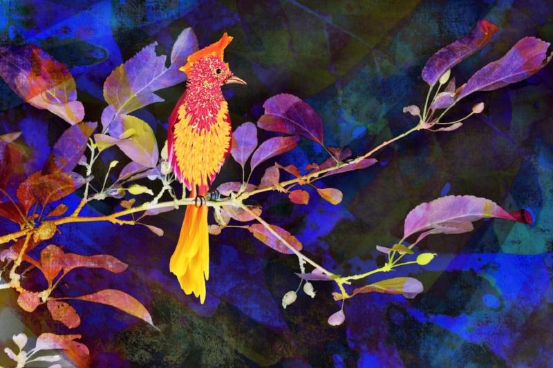 Petal Bird