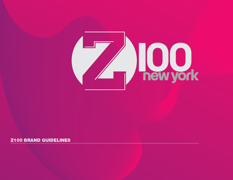 Z100 Brand Guidelines Spread.png
