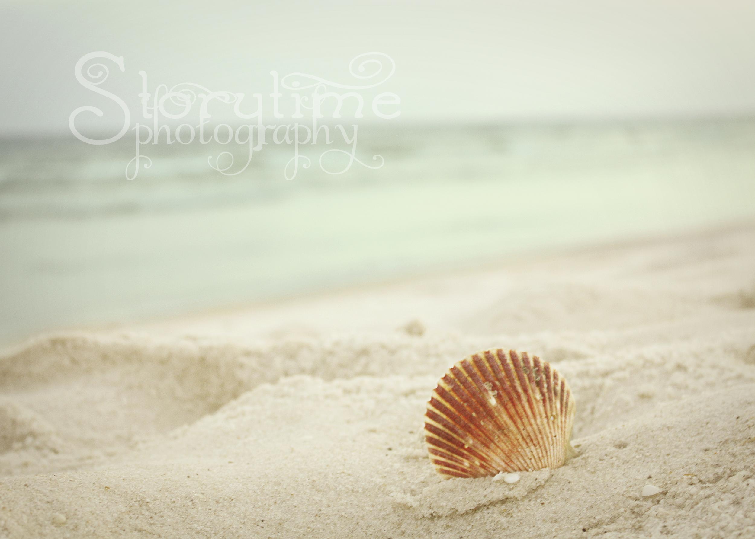 beach1fb.jpg