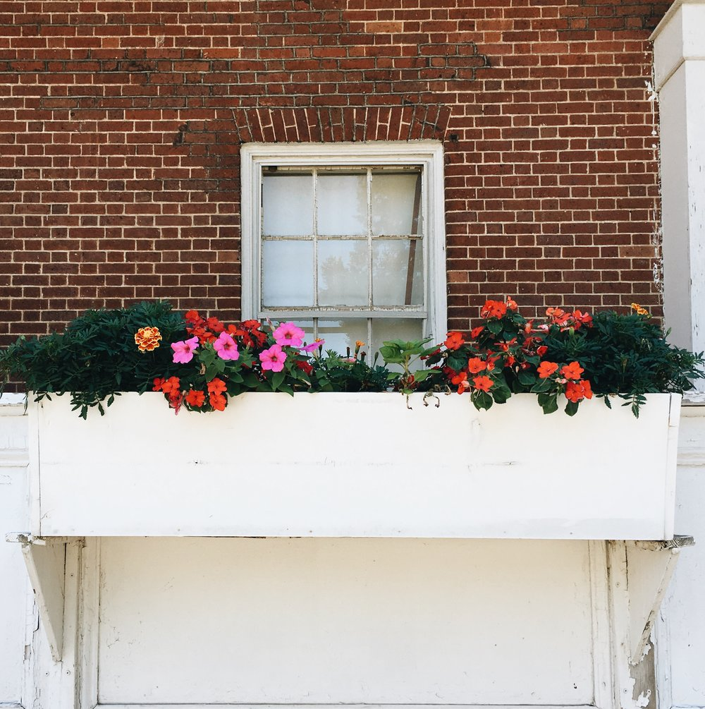 The pretty flower boxes of Fort Jay