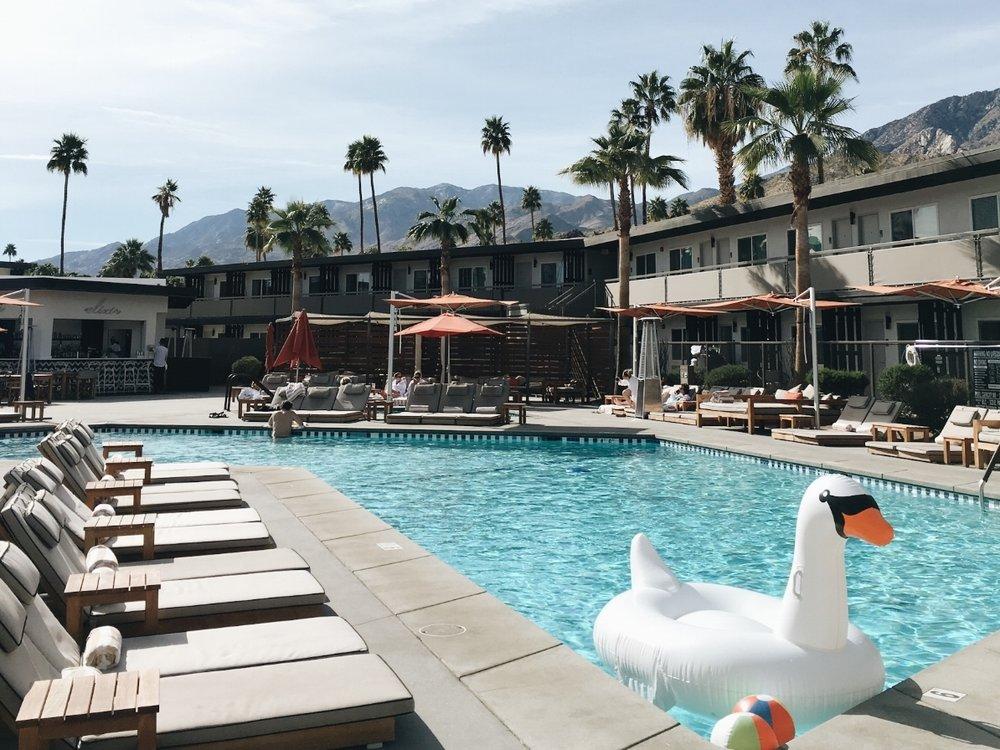 022c5-seesoomuch_v_palm_springs_hotel_pool.jpg