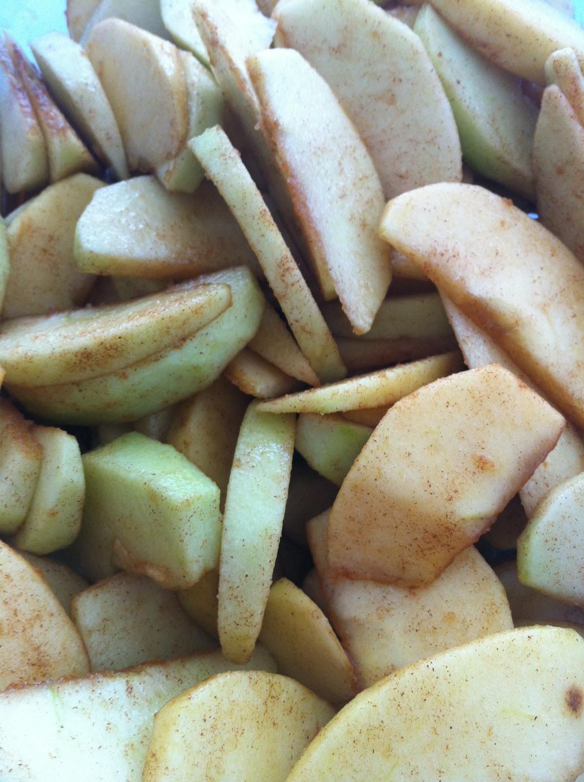 Escorra as maçãs e, numa tigela grande, misture à elas os açúcares, a canela, o sal, a noz moscada e o amido de milho.