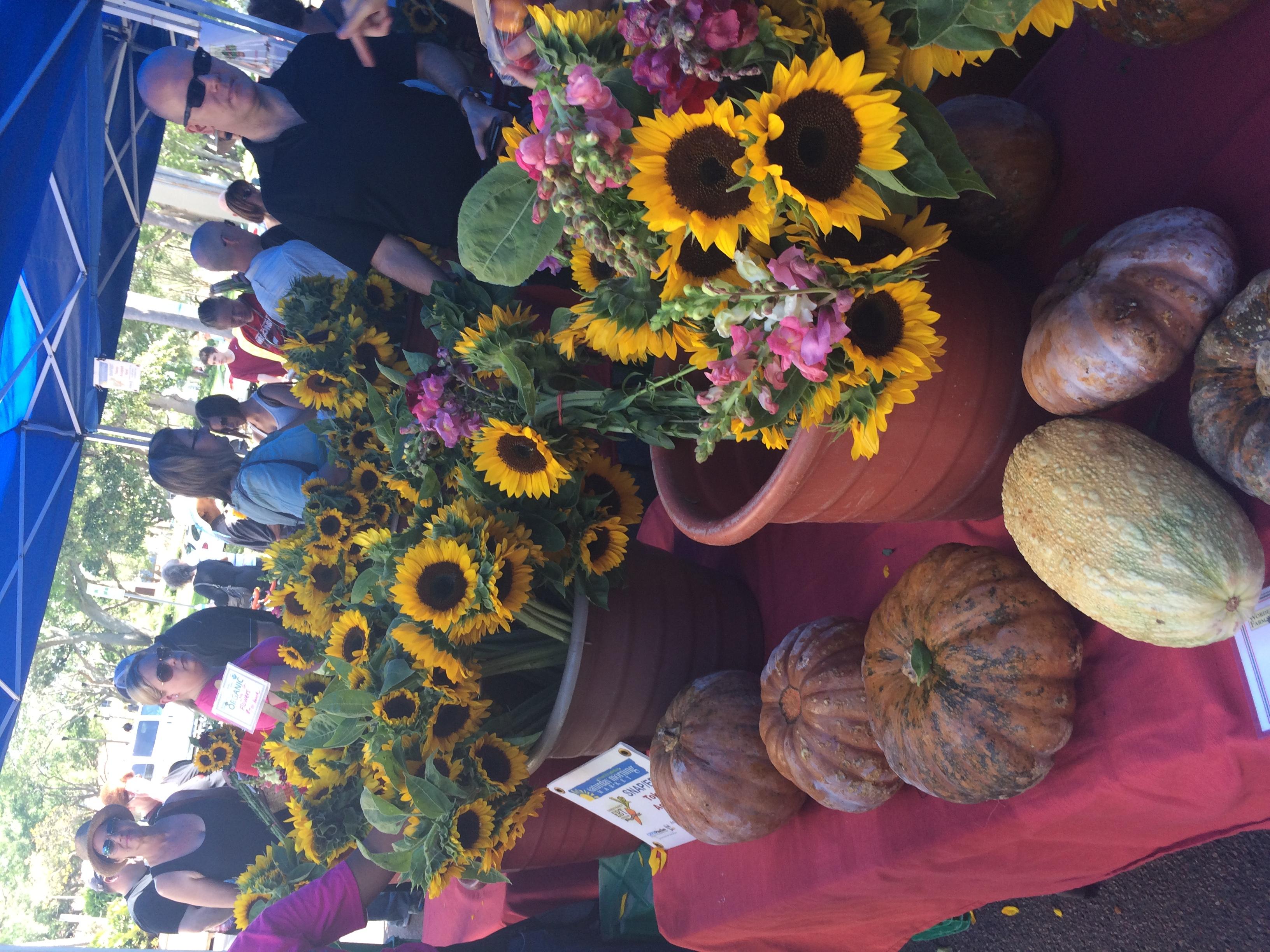 Na barraca de hortaliças e verduras também tinham flores, como estes lindos girassóis.