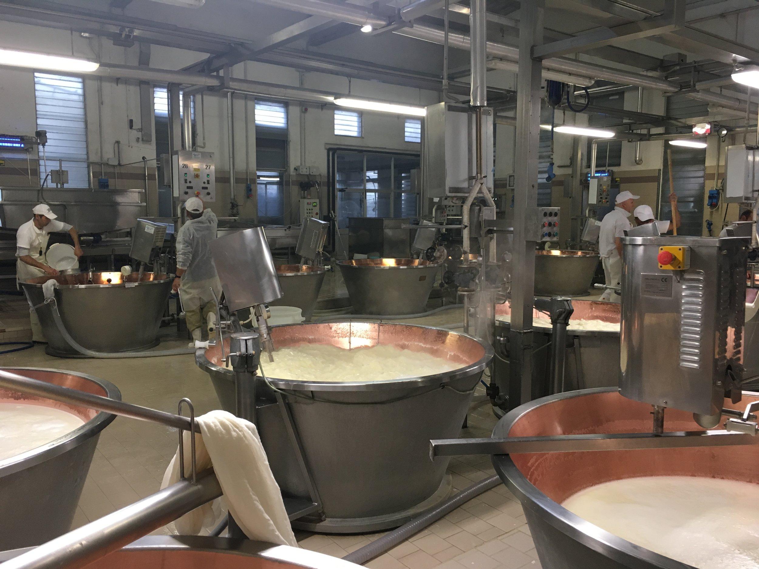 Daí o leite coalhado é aquecido a 55 graus celsius e agitado para que os sólidos se unam com facilidade,formando uma massa borrachenta.