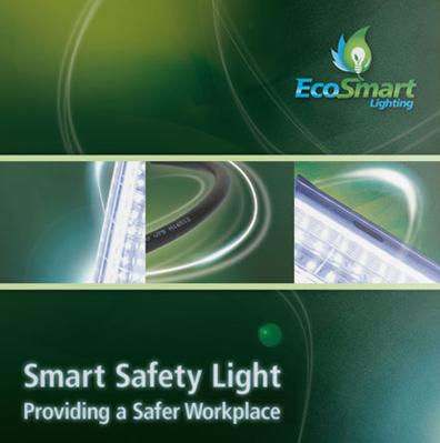 EcoSmart Lighting Book Design and Printing