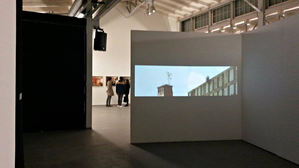 Installation view / Alex Mirutziu - Self portrait at 32